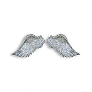 Angel Wings/Silver